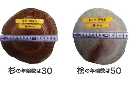 シロアリ対策に国産ヒノキ材